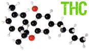 THC   Tetrahydrocannabinol